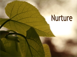 Serve Through Nurture